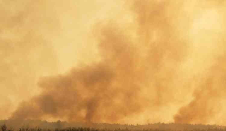 En Sardaigne, en Italie, où un berger et un éleveur ont été tués par les flammes, quelque 120 baigneurs, cernés par le feu, ont été récupérés, jeudi 23 juillet, par des hélicoptères et des vedettes de la protection civile.