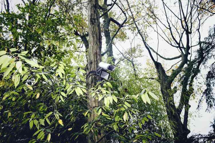 Les habitants du parc privé de la commune vivent en vase clos, protégés par de hauts murs et de la vidéosurveillance. Photo:Paolo Verzone pour M Le magazine du Monde