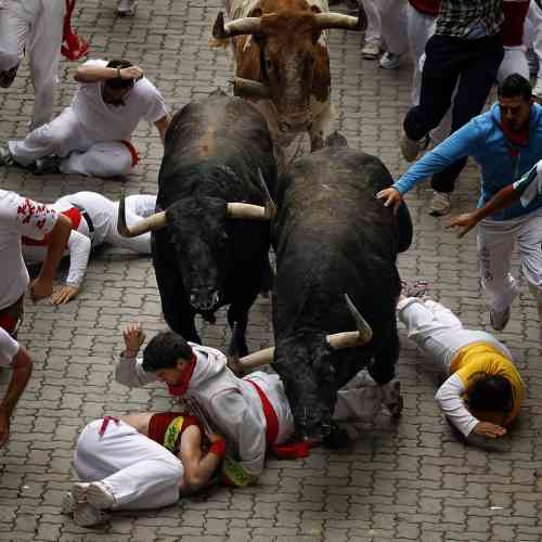 Revelers run and fall in front of Fuente Ymbro's ranch fighting bulls during the running of the bulls of the San Fermin festival, in Pamplona, Spain, Wednesday, July 11, 2012. (AP Photo/Daniel Ochoa de Olza)