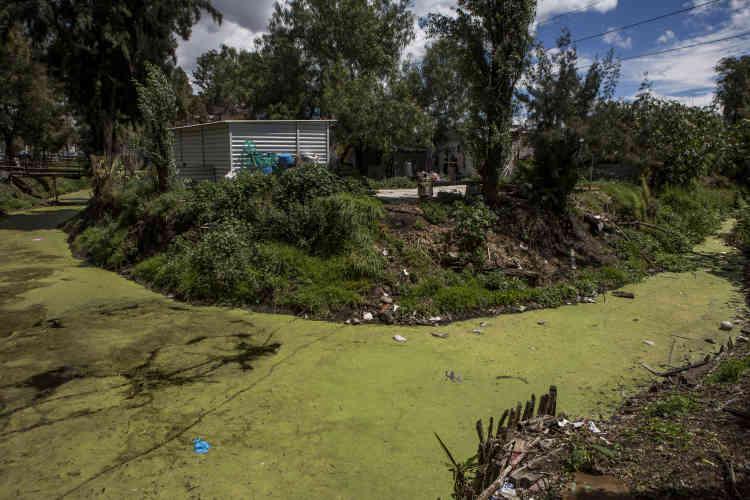 Les constructions sauvages déversent directement leurs eaux usées dans les canaux.
