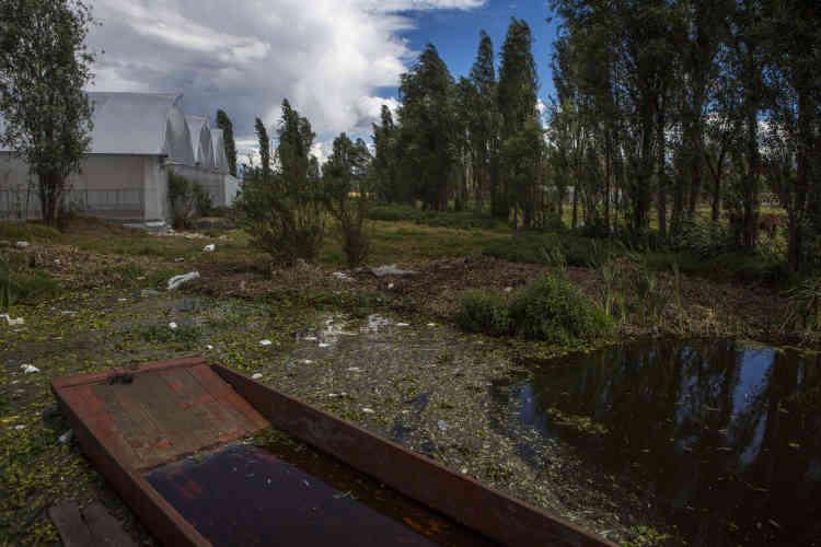Afin de garder le label de patrimoine de l'Humanité, l'autorité de la zone patrimoniale (AZP) de Xochimilco a été crée pour la sauvegarde de la biodiversité de la zone lacustre.
