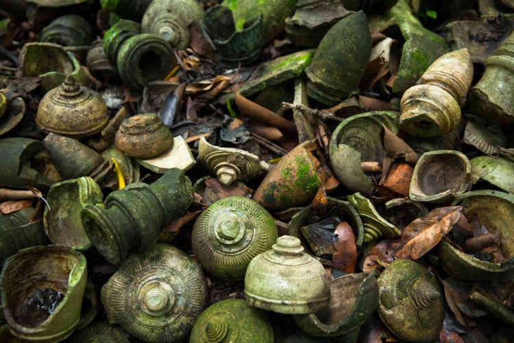 Un lot de céramiques découvert sous la végétation. Plusieurs fours à céramique datant des IXe-Xe siècles ont été mis au jour.