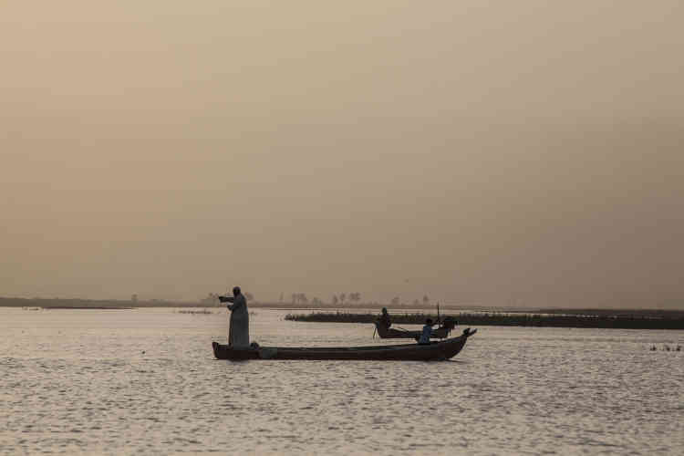 La pêche au filet, traditionnelle dans les marais, tend à disparaître au profit de la pêche à l'électricité. Elle permet une pêche plus rapide mais tue à la fois grands et petits poissons.