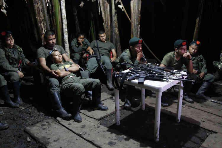 Des combattants du 48e front regardent la télévision dans leur campement, dans la jungle de Putumayo, le 12 août.