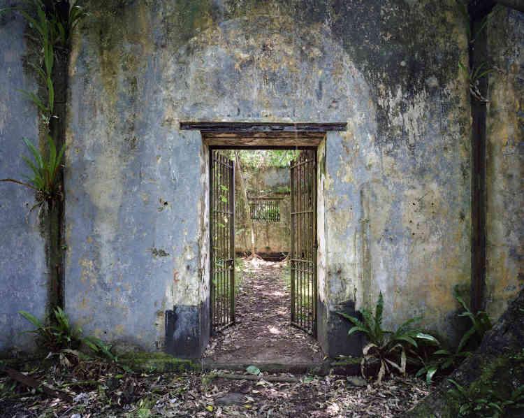 «L'île mangeuse d'hommes s'est transformée en île luxuriante. Les murs se sont vêtus de couleurs éclatantes et sont parcourus de végétation. Comme si la nature s'appliquait à faire oublier la cruauté des hommes. »