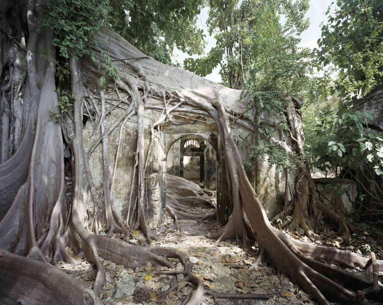 «L'édifice engendre des sentiments contrastés. Symbole d'un passé douloureux que l'on voudrait voir disparaître, il nécessiterait pourtant d'être sauvegardé au titre du devoir de mémoire. Finalement, c'est la nature qui se charge de résoudre ce dilemme.»
