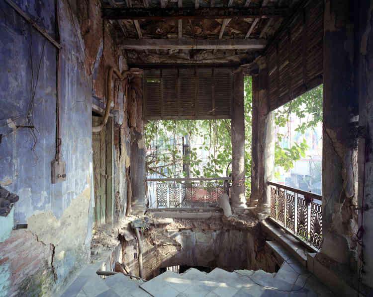 «Ce bâtiment toujours habité est devenu le soutien nécessaire au développement d'un arbre tentaculaire. Ses racines couvrent les murs autrefois bleus. Arbres et murs sont devenus indissociables et complémentaires pour le maintien de la structure. »
