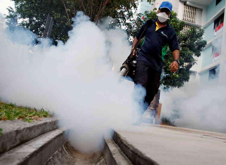 L'Organisation mondiale de la santé a annoncé, le 18novembre, que le virus Zika, qui provoque de graves anomalies cérébrales chez les nouveau-nés, n'était plus «une urgence de santé publique de portée mondiale». Il reste néanmoins un «problème hautement important à long terme» – et nécessite des mesures de lutte contre le moustique, comme ici, à Singapour. Depuis 2015, 73 pays ont été touchés par le virus Zika, majoritairement en Amérique latine, au Brésil en particulier. Une vingtaine de pays ont constaté des cas de microcéphalies et de syndrome de Guillain-Barré, potentiellement liés à Zika.