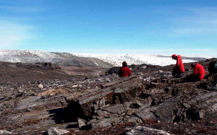 Des géologues ont découvert au Groenland des traces de vie vieilles de 3,7milliards d'années, soit 200millions d'années plus anciennes que les précédentes. Ce sont de minuscules structures en forme de vagues, des stromatolithes, imputées à une activité microbienne. L'annonce, dans Nature du 1erseptembre, est toutefois contestée et demande confirmation, tant les indices sont subtils.