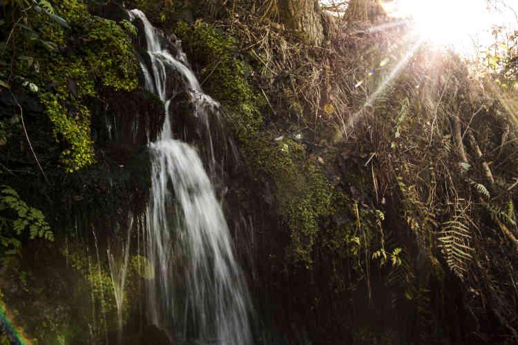 Les sources de Molines donnent une eau potable. Le village envisage depuis longtemps une usine de mise en bouteilles ou de produire de l'électricité.