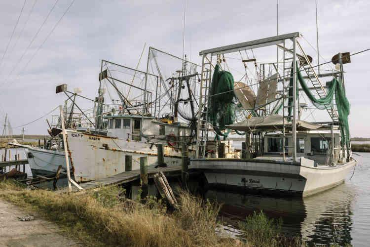 Des bateaux de pêche à quai.La Louisiane est le premier Etat producteur decrevettes, un secteur qui a été sinistré par lamarée noire de la plate-forme pétrolière Deepwater Horizon, en avril 2010.