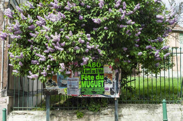 Panneau d'affichage pour la Fête du muguet, à Balbronn.