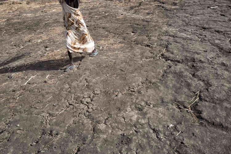 En février 2016, le camp de protection des civils de la Minuss, près de Malakal, a subi l'assaut de l'armée sud-soudanaise. L'attaque a coûté la vie à une trentaine de déplacés, révélant l'incapacité des casques bleus à les protéger.