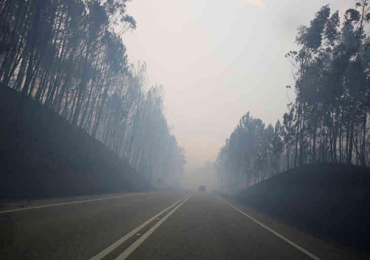 Deux Canadairs espagnols ont été dépêchés sur place dimanche matin pour appuyer les pompiers portugais.