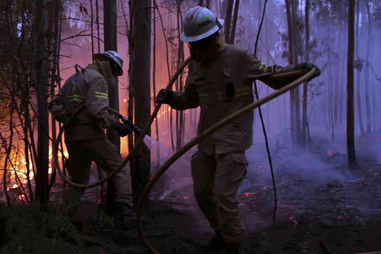 La plupart des victimes ont été piégées par les flammes alors qu'elles se trouvaient sur un axe routier traversant la forêt.
