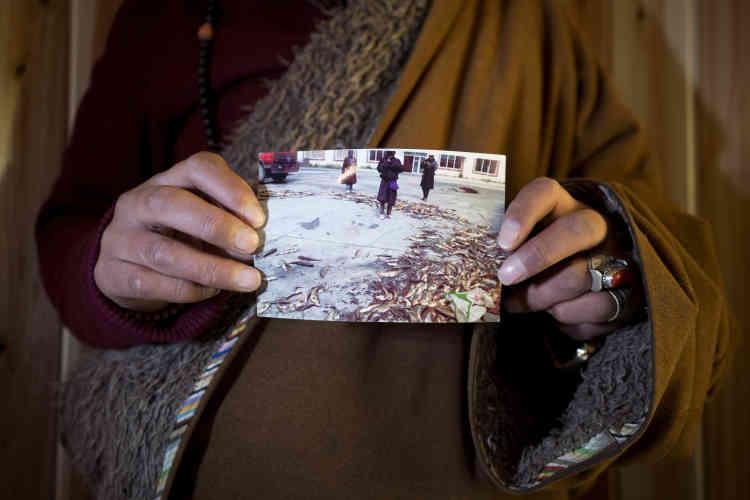 Un homme tibétain tient une photo datant de 2013, et montrant une centaine de poissons morts, victimes de la pollution de la mine Rongda dans la rivière Liqi.