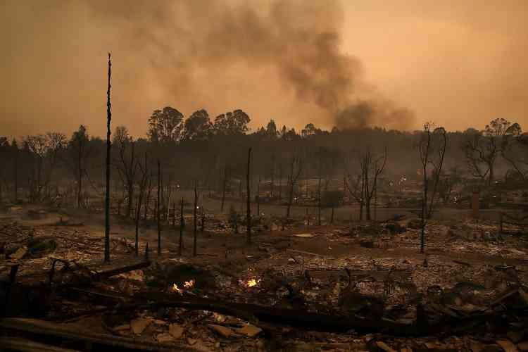 Selon les pompiers de Californie, environ 32000 hectares ont déjà été ravagés par les flammes depuis dimanche soir dans cette région très touristique et cossue du nord-ouest des Etats-Unis.