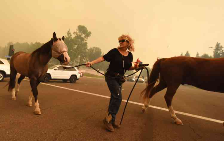 «En moins de 24 heures, plus de dix-huit feux » se sont déclarés, détruisant « plus de 2 000 habitations et en [menaçant] des milliers d'autres», a précisé M. Brown.