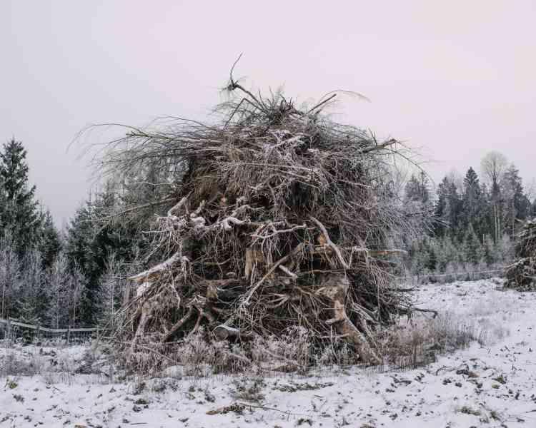 Une pile de bois provenant des terres défrichées(Grue Finnskog, 2016).