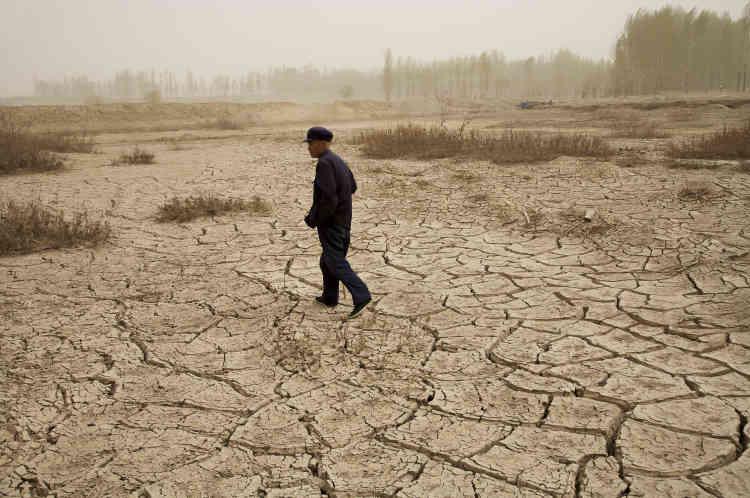 «Cette série témoigne en détail de l'une des plus grandes catastrophes écologiques de notre époque: les modes d'agriculture et d'élevage non durables ont réduit en désert des terres agricoles autrefois fertiles.»