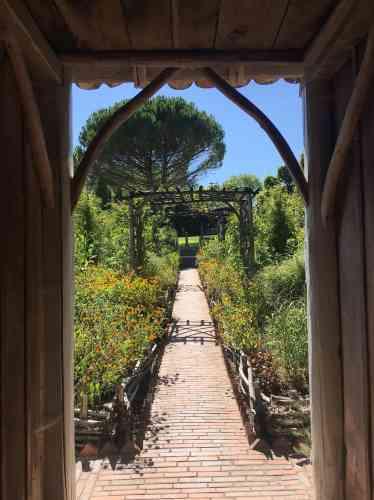 Ce jardin doit avant tout son nom à la végétation qui y pousse, probableclin d'œilde son créateur, né à Buffalo.