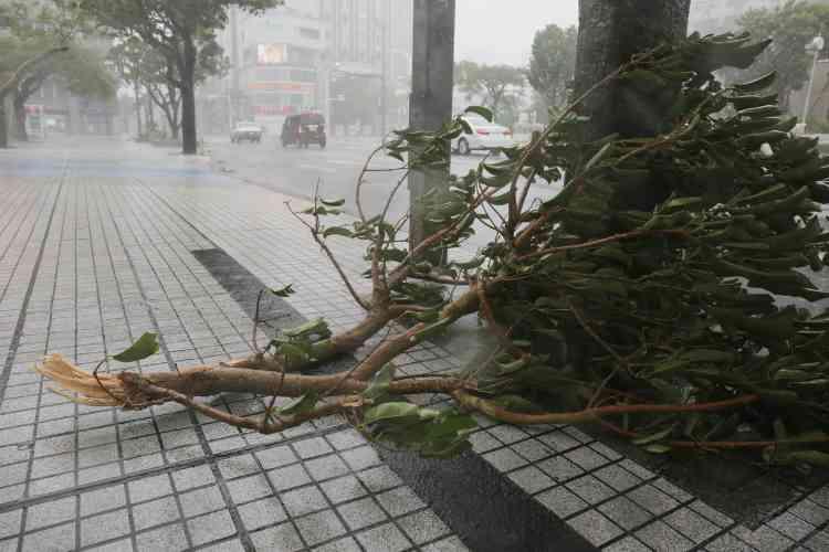 Alors que le typhon progressait vers l'est du pays, les autorités ferroviaires ont pris la décision rare d'annuler les services de train en soirée à Tokyo, dont le réseau est l'un des plus fréquentés au monde. Les responsables de la compagnie ont exhorté les usagers à rester dans des endroits abrités.