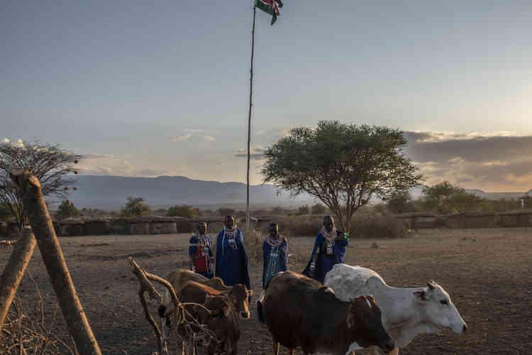 Premiers témoins, les Masaïs sont aussi, parfois, les premiers acteurs du braconnage, un concept aux contours flous dans cette savane où les conflits avec les animaux sont fréquents. Lorsqu'une vache est dévorée,les villageois en colère veulent éradiquer la menace. Par eux-mêmes, ou en aidant les braconniers à trouver l'animal, en échange d'un peu d'argent.