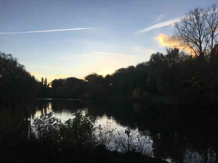 En 2014, le paysagiste Gilles Clément a créé sur l'étang du Cam le«Jardin du 6econtinent», une commande publique conçue, selon ses propres termes, afin de«conjurer la douleur».