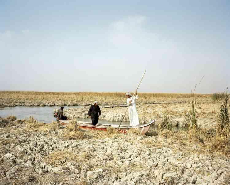 Dans les marais, le taux de salinité augmente et perturbe les équilibres naturels. Des croûtes de sel se forment sur le sol, les roseaux se dessèchent.