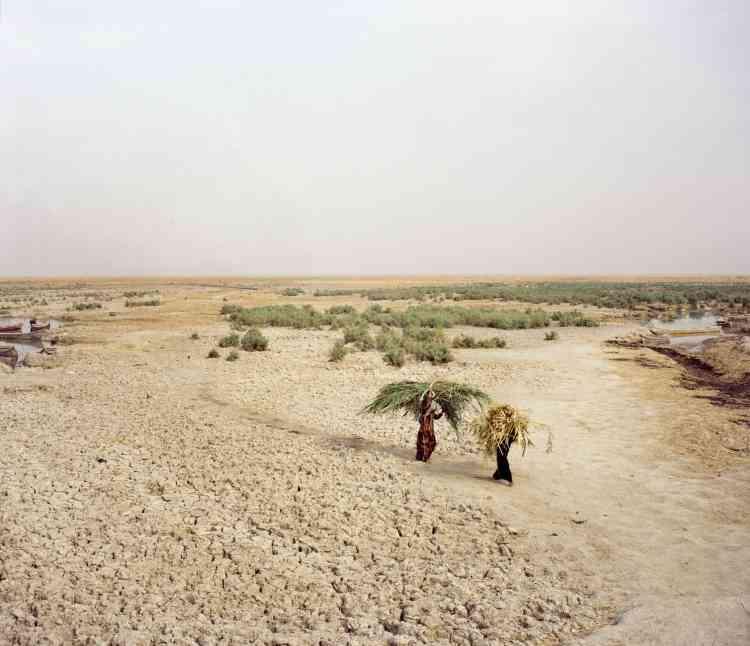 Le delta de Chatt Al-Arab –les marais au sud de l'Irak– a longtemps constitué un écosystème humide et fécond. Il a été inscrit au Patrimoine mondial de l'Unesco en 2016.