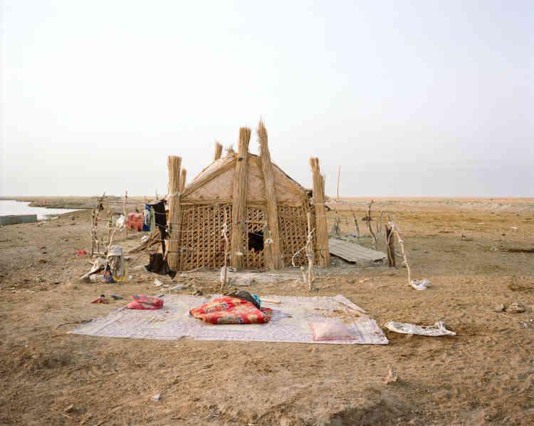 Une«mudhif», habitat traditionnel en roseaux des Arabes des marais, les«Maadans».
