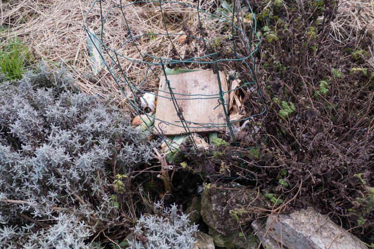 Le jardin abrite un «keyhole garden», un système de terrasses dans lequel se trouve un compost qui permet d'alimenter directement les plantes.