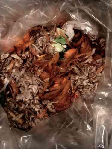 Déjà quand il travaillait chez Alain Passard, Bertrand Grébaut, chef de Septime, était alerte sur les questions d'éco-responsabilité. Dès l'ouverture de Septime, il a mis en place une politique anti-gaspillage et une réflexion sur le traitement des déchets. Aujourd'hui, il travaille des bêtes entières, se bat avec les fournisseurs pour qu'ils reprennent leurs cagettes vides, investit plus de 5000 euros dans une machine à broyer le carton et paye près de 15000 euros par an pour qu'une société vienne collecter chaque semaine ses bio-déchets (3,5 tonnes par mois pour Septime et Clamato). Lors des entretiens d'embauche, il insiste sur le fait que l'employé apprendra, certes, des techniques culinaires, mais surtout à travailler de façon responsable. Une éthique qui a valu au restaurant de gagner le «Sustainable Restaurant Award» du classement des 50 World's Best Restaurants en 2017. Bertrand Grébaut estchef du restaurant Septime, 80 rue de Charonne, Paris.