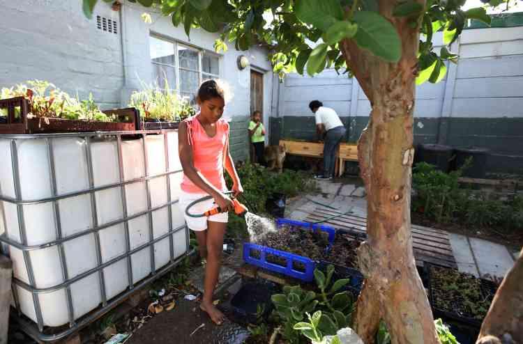 GrowBox est une excellente solution de sécurité alimentaire et écologique. «Il fut un temps où j'étais au chômage et luttais pour nourrir ma famille, se souvient Renshia. Cultiver des légumes dans ma cour m'a sauvé la vie.»