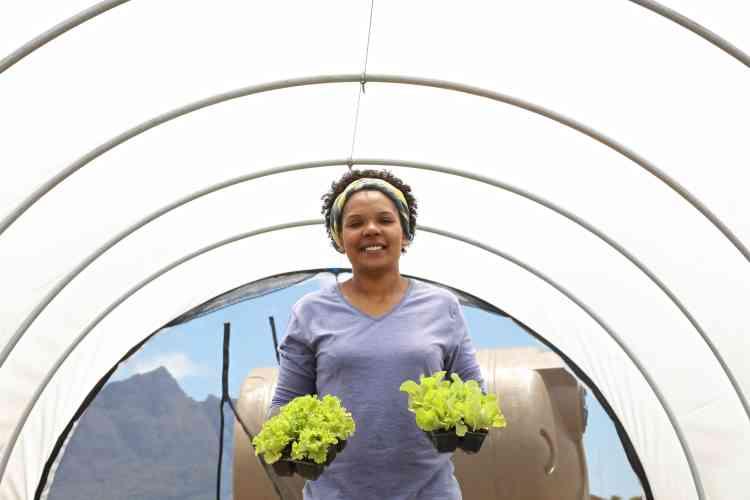 Avant de créer GrowBox, Renshia est restée au chômage pendant deux ans. «Mon seul diplôme est le bac, je n'avais ni argent ni connaissances. Tout ce que j'ai construit, je l'ai fait petit à petit en réinvestissant chaque centime dans l'entreprise.»