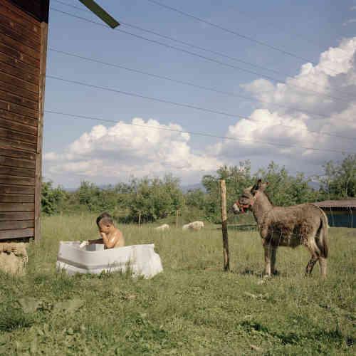 Dans la campagne à côté du village deGolnik, au nord de la Slovénie, proche de la frontière avec l'Autriche.