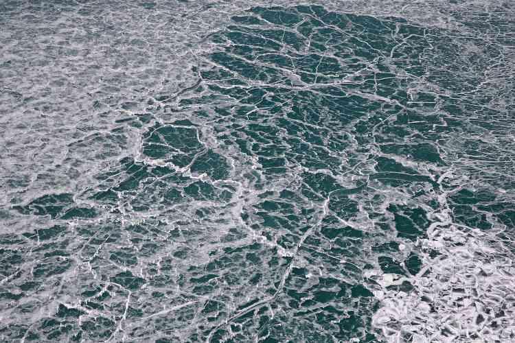 Le 31 janvier, la glace s'est accumulée le long de la rive du lac Michigan alors que les températures chutaient à environ –20 degrés à Chicago, Illinois.