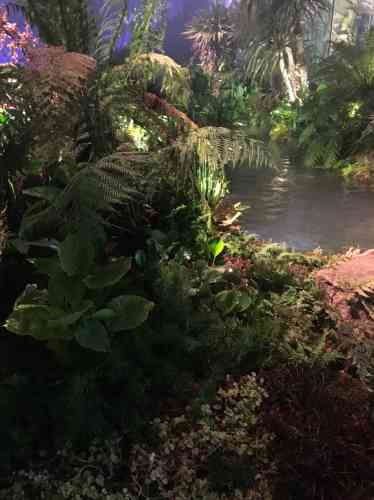 Conçu par les promoteurs du projet nantais du gigantesque Arbre aux hérons, ce «jardin extraordinaire» semble tout droit sorti de la période jurassique. Il préfigure celui qui doit être créé d'ici à 2022 à la place de l'ancienne carrière Miséry, face à la Loire.