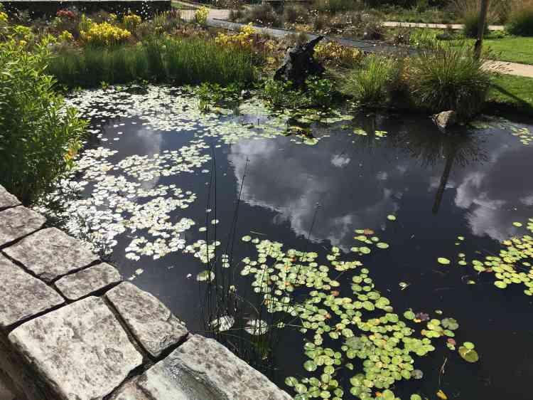 La succession de« scènes botaniques» reconstituées est une des réussites du Jardin des plantes nantais.