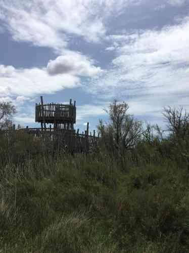 La Maison de la Camargue gardoise participe à l'entretien et à l'observation des espaces naturels classés du site. Elle accueille les visiteurs et les prépare à découvrir ces paysages uniques.