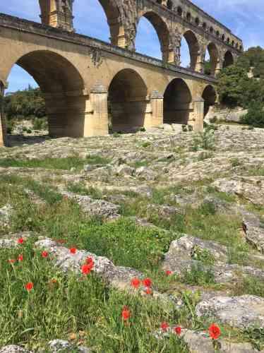 Fragiles et éphémères, les coquelicots semblent faire un clin d'œil au monument deux fois millénaire.