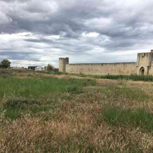 La prairie a reconquis les espaces au pied des remparts de la cité fondée au XIIIesiècle par LouisIX, mettant en valeur leurs formes épurées. Depuis plusieurs siècles déjà, le sel était recueilli à proximité, et son exploitation, industrielle aujourd'hui, façonne aussi le paysage environnant.
