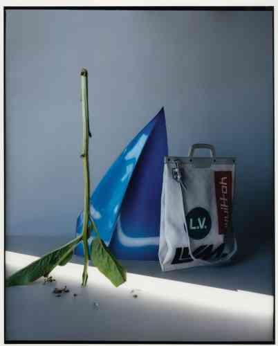Sacen cuir imprimé, Louis Vuitton.