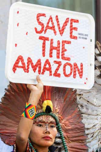 Cette réunion avait visiblement été convoquée en réaction aux pressions qui s'accentuaient sur le président pour sauver l'Amazonie, dont 60% se trouve en territoire brésilien (ici à Londres, au Royaume-Uni).