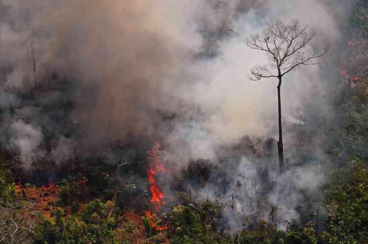 A une soixantaine de kilomètres de Porto Velho, d'épais rideaux de fumée grise étaient visibles au-dessus de la végétation tropicale où des flammes dévoraient des arbres (ici dans l'Etat du Rondônia, au Brésil).