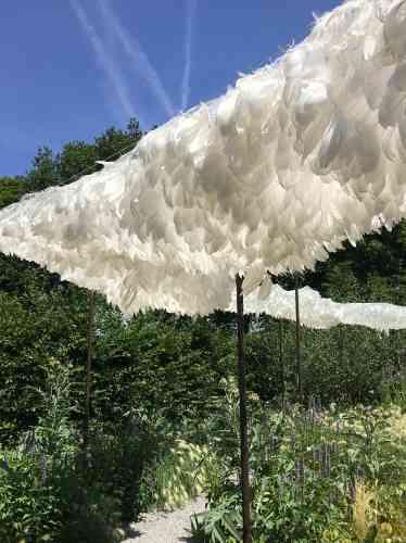Il se dégage de cette installation faite de plumes blanches une incroyable beauté. Les plumes, qui constituent un dais filtrant les rayons du soleil en laissant passer l'air, sont des prodiges d'ingéniosité dues à la nature, comme les plantes elles-mêmes, qui transforment la lumière et le CO2en chlorophylle.