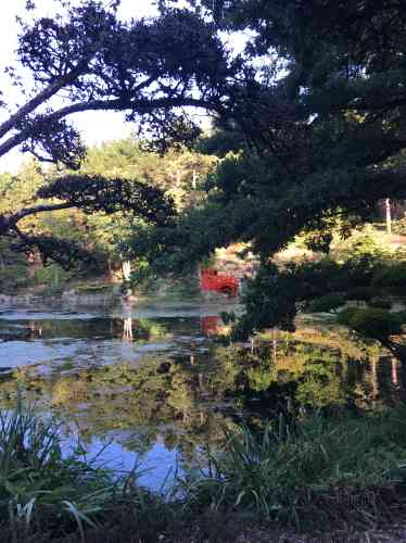 L'éloignement de l'ensemble constitué par le pont et le torii permet à l'imagination du promeneur de voyager au rythme paisible de l'écoulement de l'eau.