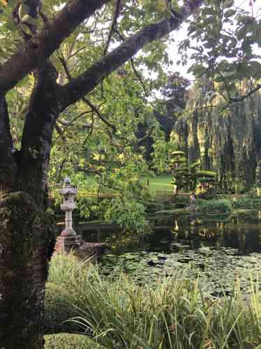 Une autre composition, due au travail sensible des jardiniers du parc, qui met en scène la nature et incite, là encore, à la contemplation.