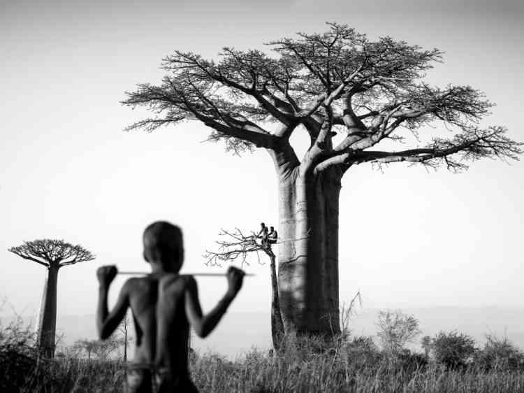 «La Galerie Lee montre les images documentaires, ethnographiques et humanistes de Pierrot Men, chroniqueur insatiable de son île-continent, Madagascar.»
