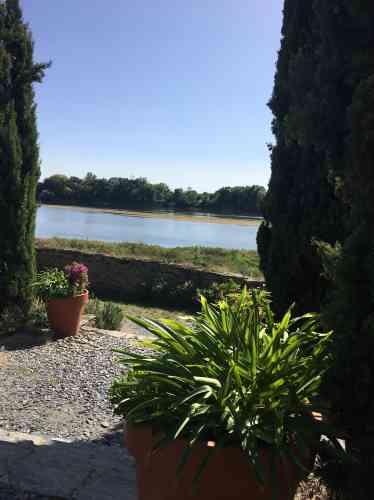 Paysage apaisant de l'île aux Chevaux et des bords de Loire.